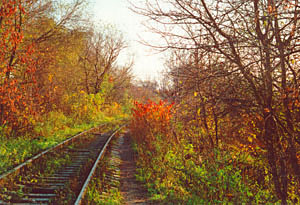 THE RAILROAD - photo by Dana Mad